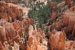 Bryce Canyon 04 (Brandon_Smith) Tags: landscape nationalpark united states utah bryce brycecanyonnationalpark canon5dmkiv