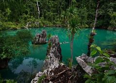 is it real? (Collin Key) Tags: bluelagoon indonesia pulaulabenke sulawesi lasolo sulawesitenggara indonesien id