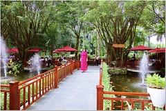 Bridge and pond goldfish! (phamngocthangqm) Tags: cầu cây cá vàng nước phun mùa hè summer resort vietnam 5dsr 2470ii