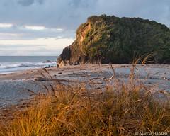 Sunset at Haast Beach (Marcia H) Tags: haastbeach newzealand shipcreek southisland westcoast sunset grass sea sky rock coast beach landscape ocean water sand