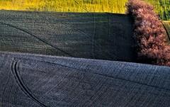 Crinali (rik58) Tags: colline campi campagna paesaggio marche solchi