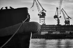 Voigtlander  Nokton 58mm f 1.4 (samulikarjalainen) Tags: finland helsinki ship turso hietalahti sony 58mm voigtlander a7rii ss monochrome blackandwhite sea dock