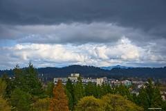 Black cloud then rain. (JSB PHOTOGRAPHS) Tags: jsb3268 copy blackcloud clouds rain eugeneoregon skinnerbuttepark trees nikon d3 28300mm