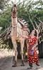 Rajasthan (SaiKiranKanuri) Tags: khejarlikalan rajasthan india in camels cart firewood tourist jodhpur