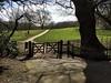 On the Heath (halifaxlight) Tags: england london hampsteadheath kenwoodhouse trees gate fence figure walking sunny shadows spring path
