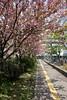 DSCF9089 (theq629) Tags: japan kyushu fukuoka 福岡