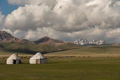 Lac Song-Köl, Kirghizistan (Pascale Jaquet & Olivier Noaillon) Tags: yourtes montagnes moutons paysage nuages ciel troupeau neige lacsongköl naryn kirghizistan kgz