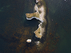 #131 Old Harry (Timster1973 - thanks for the 16 million views!) Tags: aerial aerialphotography fly mavic drone uav quadcopter dji mavicprodrone djimavicpro up uphigh droneflying tim knifton timster1973 timknifton explore exploration perspective lookdown lookingdown color colour old harry dorset coast coastal sea seascape seaside land landscape water waterscape beach ocean blue cliffs rocks cliff outdoor outdoors exterior external structures composition