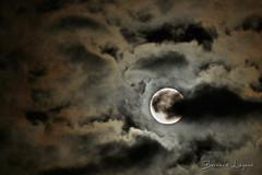 Juste après l'éclipse... | Just after the eclipse... (֍ Bernard LIÉGEOIS ֍) Tags: france nouvelleaquitaine poitoucharentes vienne poitiers montamisé ensoulesse lune moon mond éclipse eclipse pleinelune fullmoon nuages clouds