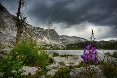 Lake Marie (CTfotomagik) Tags: snowy range wyoming lake marie mountains landscape hummingbird alpine water nature