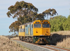 442s5 trails GM10 as they continue on their driver training run to Maryborough (bukk05) Tags: 442s5 railpage:class=202 railpage:loco=442s5 rpaunsw442sclass rpaunsw442sclass442s5 gm10 442sclass gmclass aegoodwin alco12251c dl500g ml1 emd16567b bungbong world explore export engine emd electromotivediesel alco railway railroad railpage rp3 rail railwaystation railwaystations train tracks tamron tamron16300 trains photograph photo loco locomotive landscape horsepower hp flickr freight diesel dieselelectriclocomotive station standardgauge sg winter 2018 australia ssr southernshorthaulrailroad canon60d canon clyde clydeengineering crew crosscountry victoria vr victorianrailway vline victorianrailways shireofcentralgoldfields murraybasinrailproject landline pyrenees mainline