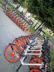 Bi-cyclette = Pattern-cyclette 🚲 (VauGio) Tags: biciclette bici bicicletta bikes bike pattern huawei p10 leica