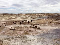pfpd029forest (invisiblecompany) Tags: 2018 travel usa arizona nationalpark petrifiedforest