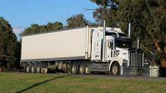 Random WAGGA ~ White (5/7) (Jungle Jack Movements (ferroequinologist)) Tags: kenworth volvo euro 5 600 kreuger todiam lenssec wagga nsw new south wales sturt hp horsepower big rig haul haulage freight cabover trucker drive transport carry delivery bulk lorry hgv wagon road highway nose semi trailer deliver cargo interstate articulated vehicle load freighter ship move roll motor engine power teamster truck tractor prime mover diesel injected driver cab cabin loud rumble beast wheel exhaust double b grunt white