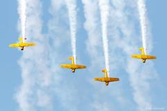 Canadian Harvard Aerobatic Team (dpsager) Tags: 2018 chat canadianharvardaerobaticteam dpsagerphotography eaaoshkoshairshow harvard northamericant6texan oshkosh wisconsin aircraft airplane airshow eaa airventure osh18