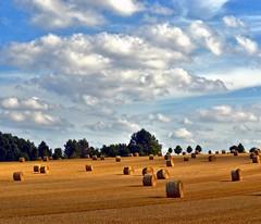 Clouds and harvest (Tobi_2008) Tags: feld field himmel sky wolken clouds landschaft landscape sachsen saxony deutschland germany allemagne germania
