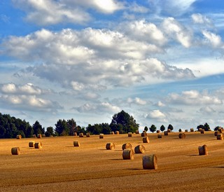 Clouds and harvest