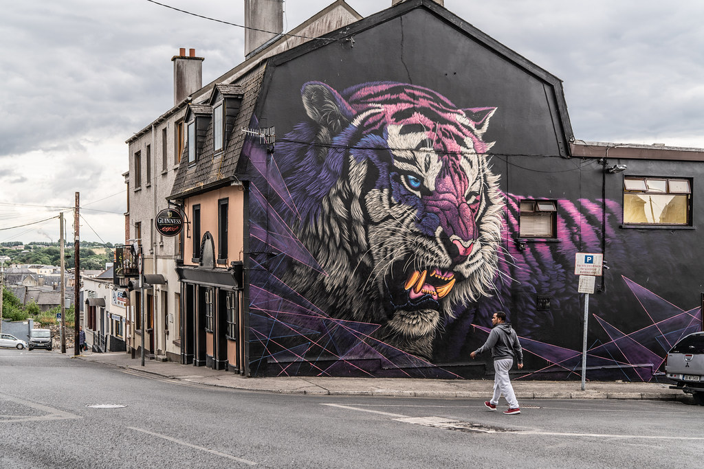 EXAMPLES OF STREET ART [URBAN CULTURE IN WATERFORD CITY]-142320