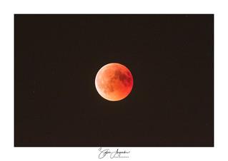 Eclipse totale de lune - sélection
