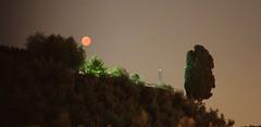 Red moon rising (diemmarig) Tags: eclisse luna rossa cipresso moon red