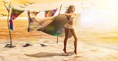 Wind in minds (meriluu17) Tags: dubai foxcity beach sea wind windy silk sand ocean bird outdoor walk minds emotions light lights sun people portrait