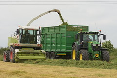 Claas Jaguar 870 SPFH filling a Broughan Engineering Mega HiSpeed Trailer drawn by a John Deere 6195R Tractor (Shane Casey CK25) Tags: claas jaguar 870 spfh filling broughan engineering mega hispeed trailer drawn john deere 6195r tractor green ballyhooly jd self propelled forage harvester traktor traktori tracteur trekker trator ciągnik silage silage18 silage2018 grass grass18 grass2018 winter feed fodder county cork ireland irish farm farmer farming agri agriculture contractor field ground soil earth cows cattle work working horse power horsepower hp pull pulling cut cutting crop lifting machine machinery nikon d7200