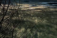 Brumes sur le Lac de Carces (jluclac) Tags: brume eau france french laccarces lacs reflets water reflected