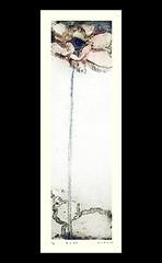 Sacred lotus (Japanese Flower and Bird Art) Tags: flower sacred lotus nelumbo nucifera nelumbonaceae sumaco yasui modern intaglio print japan japanese art readercollection