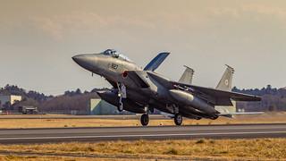 JASDF F-15J.