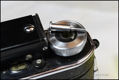 Certo Dollina II Repair Notes (08) (Hans Kerensky) Tags: certo dollina ii rangefinder folder repair remove winder transport knob central screw