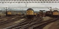 Spotless..... (Stapleton Road) Tags: guidebridge depot manchester class40 class76 class25 train railway locomotive hobby blue summer