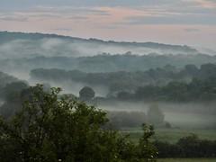 Petit matin (Faapuroa) Tags: fog forest sky country wood landscape mist nikon coolpix p900
