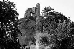Sic transit gloria mundi ... (.urbanman.) Tags: saintaubinducormier illeetvilaine bretagne château châteaufort médiéval noiretblanc blackandwhite