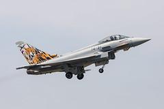 Nancy SD2 (William Dempsey 01) Tags: 142escuadrón airforce ala14 aleniaaeronautica baesystems c16731431 eads ef2000 eurofightergmbh germaneurofighterdesignation nancyocheyba133lfso spain