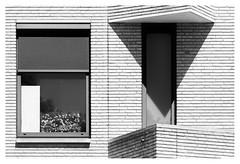 Triangle (leo.roos) Tags: architecture architectuur window raam wall muur brick shadow schaduw noiretblanc westland westerhonk monster a7rii meyerorestegor20040 m42 zebra 1966 day200 dayprime2018 dayprime dyxum challenge prime primes lens lenzen brandpuntsafstand focallength fl darosa leoroos