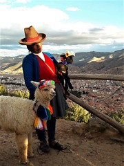 927364829 (ylenia.mestriner) Tags: alpaca peru south america cholita andes mountain cold colors city view landscape typical dress animal soft lama personal traveling wanderlust year abroad