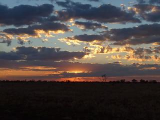 sunrise on the road to Lark Quarry (1)