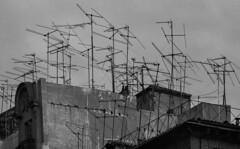 Antennas (Julio López Saguar) Tags: segundo juliolópezsaguar madrid españa spain ciudad city urban urbano blancoynegro blackandwhite película film madridvidamía madridmylife calle street riberadecurtidores tejado rooftop antennas antenas