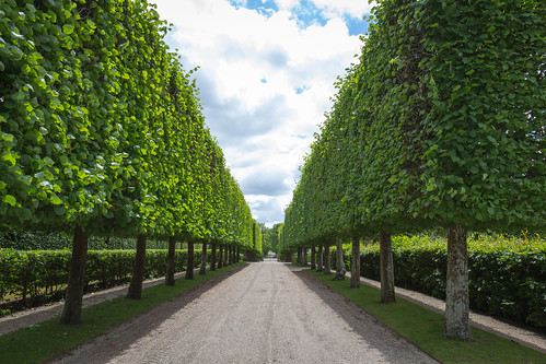 Denmark - Kvaerndrup - Egeskov Castle - Gardens
