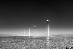 IJsselmeer (Rense Haveman) Tags: fujix100t rensehaveman fietsvakantie vakantienederland2018 urk mill turbine water lake sea landscape bw blackwhite monochrome monochromelandscape sky horizon lightroom