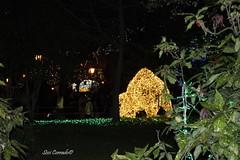 luminarie 2018 6 (sissi.corrado) Tags: luminarie salerno lucidartista