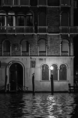 midnight - Venezia 2018 (Antonio Martorella) Tags: antomarto ntomarto venezia venice bw biancoenero blackandwhite gabbiano seagull