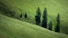 alta Via 2, Stage 5, Dolomites, Italy (monsieur I) Tags: dolomiti altavia2 summer dolomites altavia trekking meadows italy italia travel monsieuri italian moutains