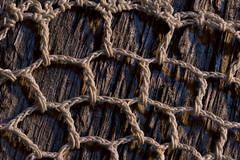 Macro Monday Mesh (Stan Griswold) Tags: macromondays mesh doily crochet macro