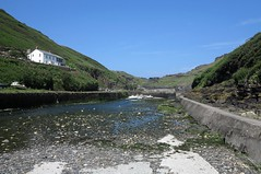 boscastle63 (West Country Views) Tags: boscastle cornwall scenery
