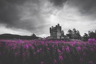 222/365 - Braemar Castle