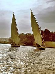 Sailing on the Nile (clarktom845) Tags: nile egypt boats water nikon ngc