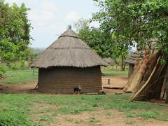Olua mudbricks 1 (FAO Forestry) Tags: fao un uganda refugees unhcr world bank environment energy south sudan woodfuel forestry