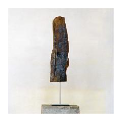 sculpture (rcfed) Tags: hasselblad mediumformat fuji film art color sculpture coal mine wood