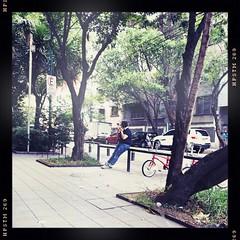 (TheKinkyKid) Tags: street urban streetphotography iphoneaography hisptanatic pistil helgaviking color iphone8 man trees square